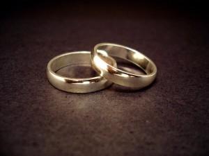 Anéis | Rings